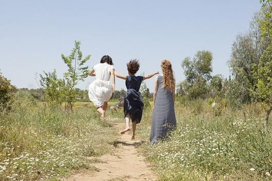 מיזו קיץ 2017 צילום רוני כנעני