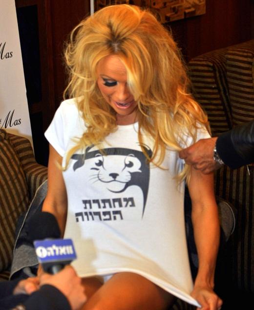 פמלה אנדרסון בישראל. צילום: חן בלחנס.