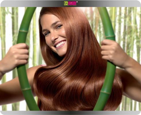 צבעי השיער של בר רפאלי
