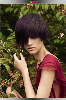 לוריאל פרופסיונל - קולקציית צבעי שיער אביב קיץ 2009