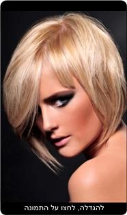 ניסו אשכנזי - קולקציית שיער חורף 2008/9