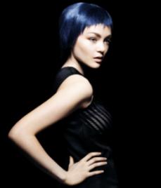 שוורצקופף - מראה שיער כחול חורף 2010.
