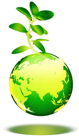 קוסמטיקה ירוקה