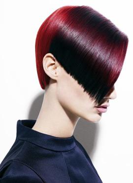 צבע שיער אורגני - שוורצקופף