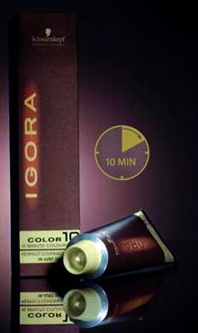 שוורצקופף פרופשיונל משיקה את צבעי IGORA Color10