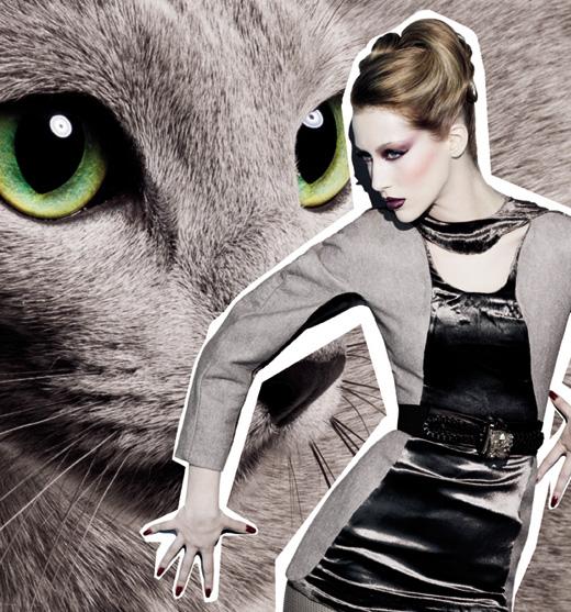 M.A.C - מראות איפור חתוליים