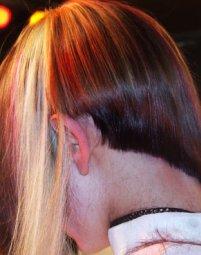 שיער סתיו חורף 2007/8