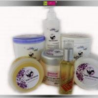 אקשן קולקשן - סדרת מוצרי עיצוב לשיער