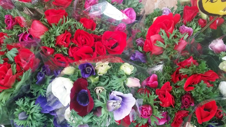 שוק הפרחים באאולט חוצות המפרץ צילום יחצ (4)