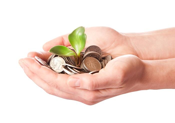 התוכנית לסיוע לעצמאים ובעלי עסקים